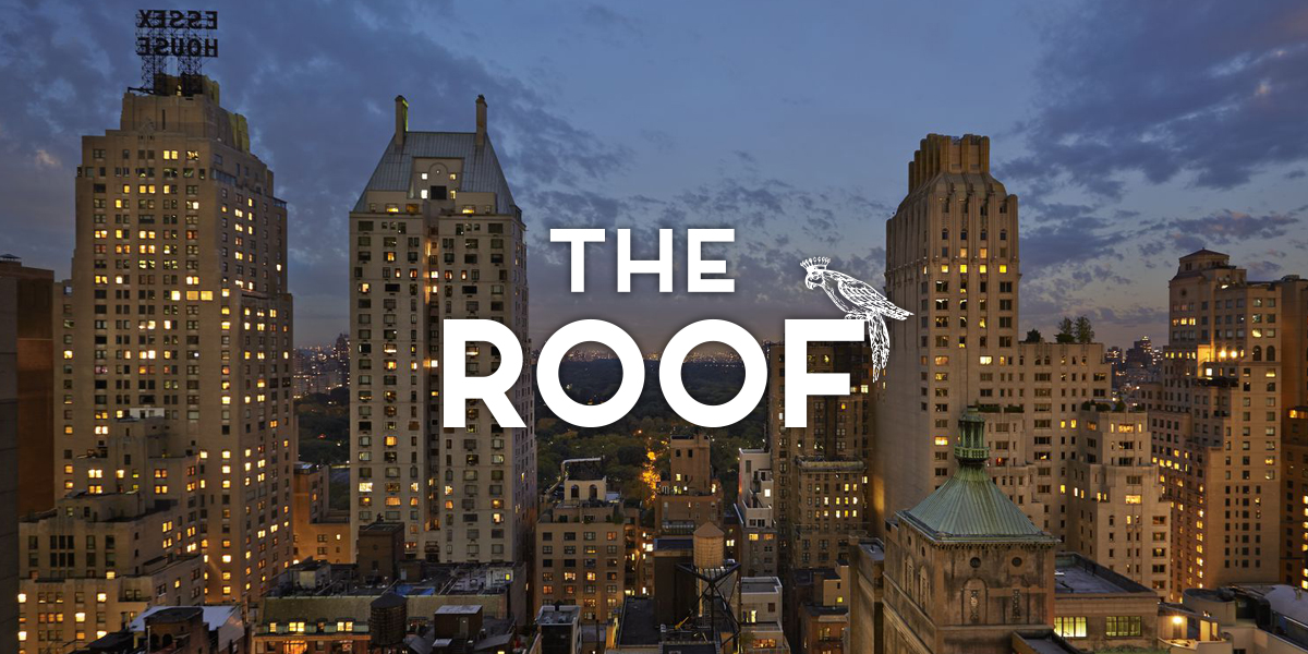 amazing the roof Part - 1: amazing the roof design ideas